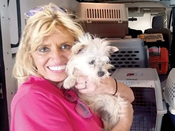 Connecting pets and people: PAWS swoops in to shelter puppy mill rescues