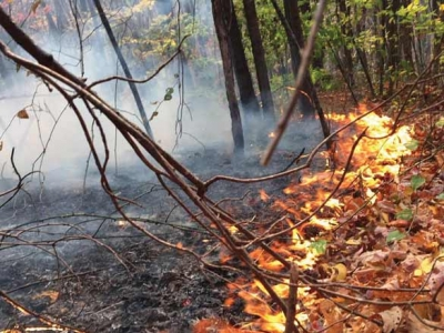 State burn ban lifted