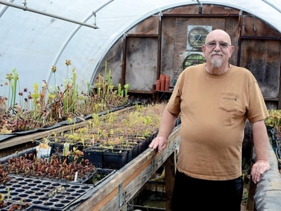 Sylva's carnivorous plant man: After nearly 30 years and thousands of plants, carnivorous plants still fascinate
