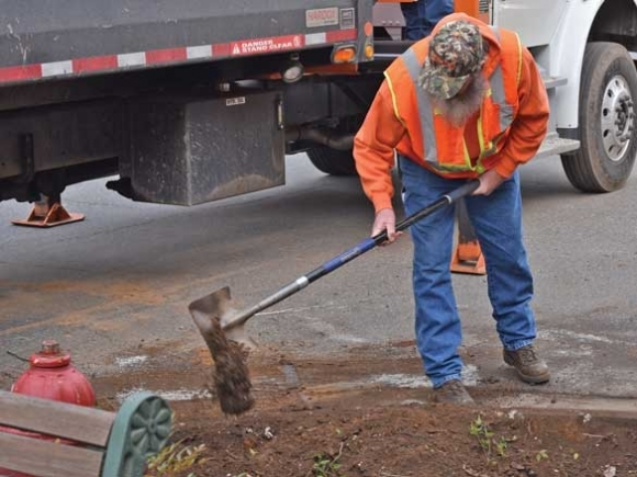 Street trees replaced in Sylva