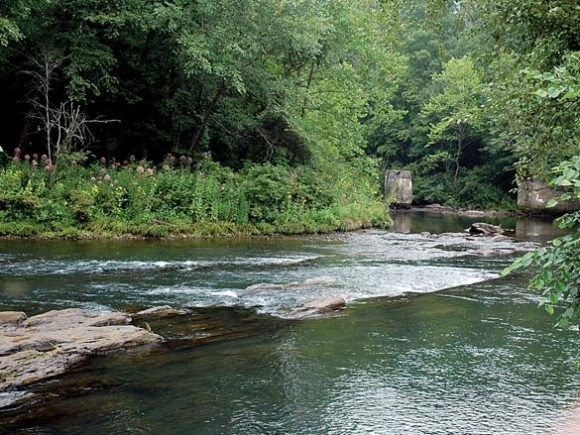Fires Creek conservation project still needs $25,000