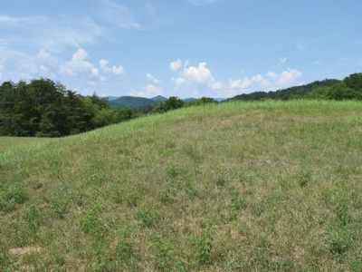 Protecting the past: Mounds hold key to understanding Cherokee history