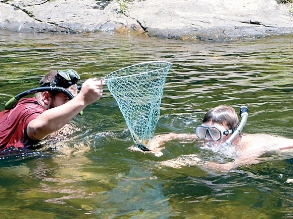 Under the Pigeon: Snorkeling workshop gives an up-close look at aquatic diversity