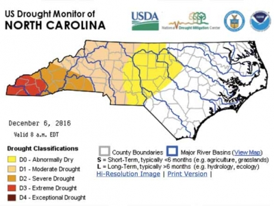 Drought diminishes due to rain