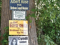 Political signs cover a corner near the Birdtown Complex in Cherokee. Holly Kays photo