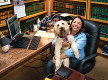 Ashley Welch pictured in her office with her dog Bella. Donated photo