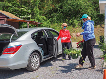 Melissa Tinsley assists with curbside pickup during the annual plant sale. Lake Junaluska photo