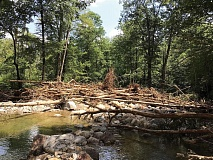 Log jams like this one on the upper Davidson River in the Pisgah National Forest could burst at any time, creating danger downstream. USFS photo
