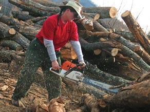 fr firewood