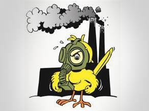 op canary