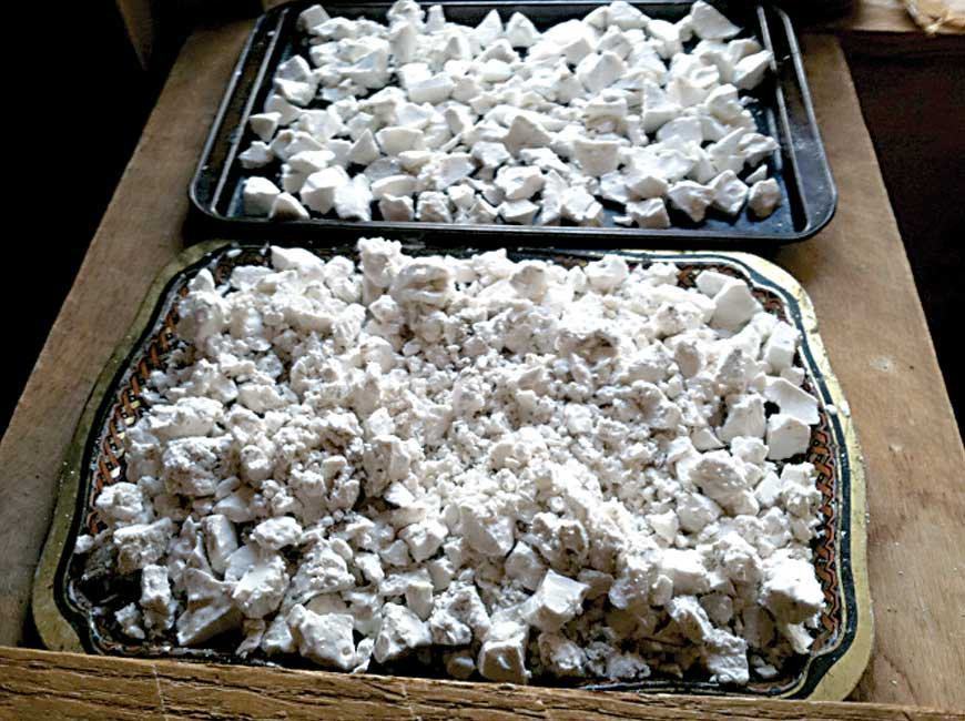 out kudzu dried