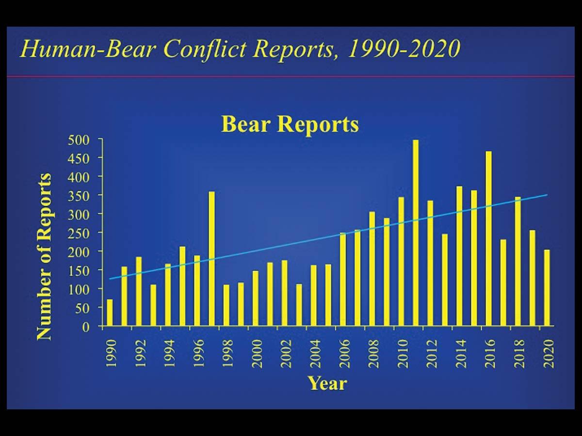 out bearsgraf