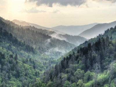 Great Smoky Mountains National Park. Courtesy Jackson County TDA