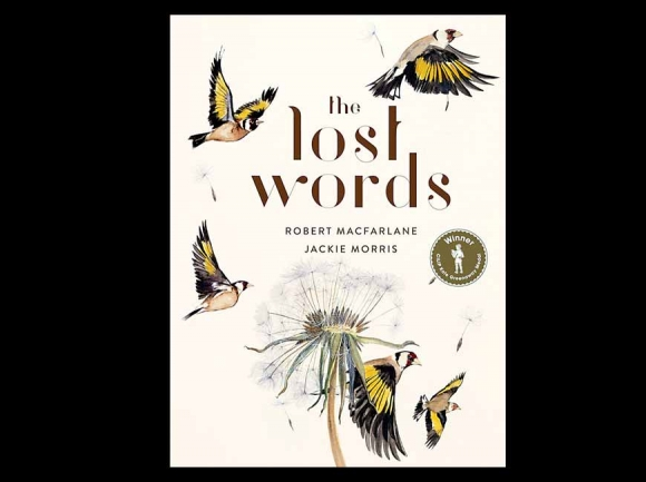 'Lost Words and Obstacles:' a review