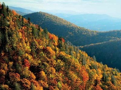 Explore the Appalachians through the eyes of student research