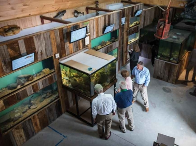 Bryson City builds on fishing tourism with new aquarium