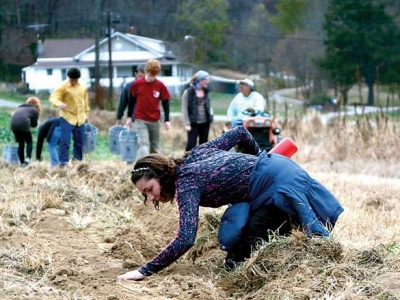 Haywood Gleaners logs 30,000 pounds of produce donations