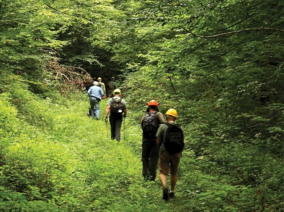 Partners of the Joyce Kilmer Slickrock Wilderness volunteers hike the Benton MacKaye Trail to do maintenance work in August. Donated photo