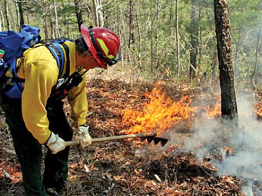 Pisgah plans prescribed burns
