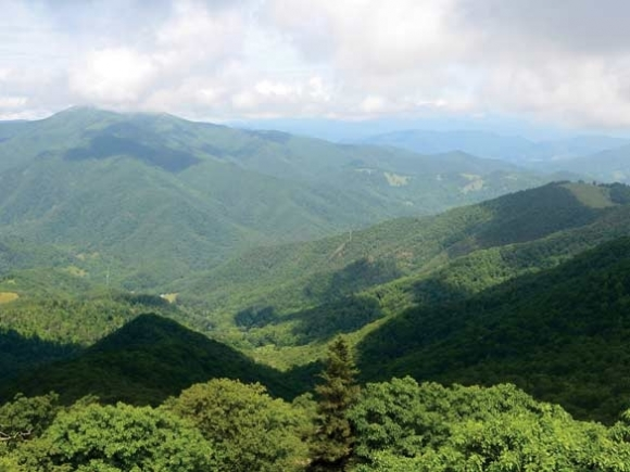 Above it all: Fryingpan hike offers vast views, diverse plant life