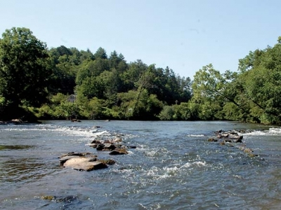 Cherokee used toxins to stun fish