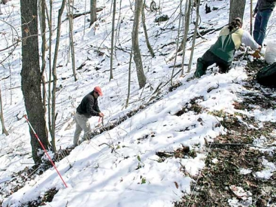 Going forward by looking backward: Tradition and science meet in Cherokee forest plan